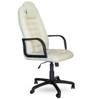 Кресло Тунис пластик кожзаменитель белый